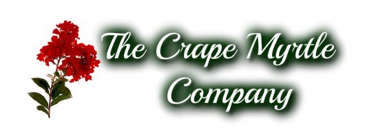 The Crape Myrtle Company